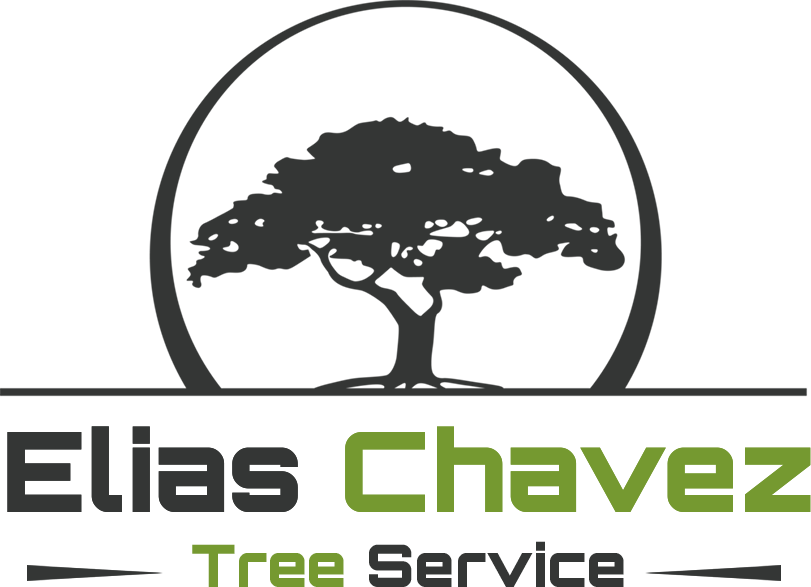 Elias Chavez Tree Service